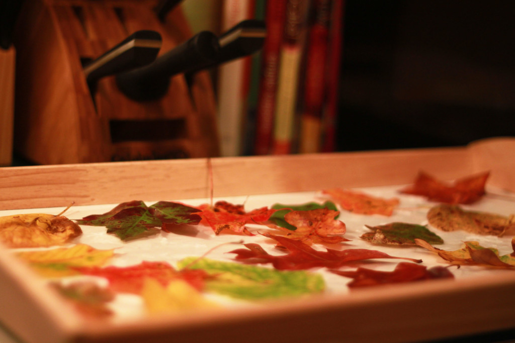Leaves on the tray