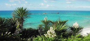 Horseshoe Bay Bermuda 300x136 Top 10 beaches in the world
