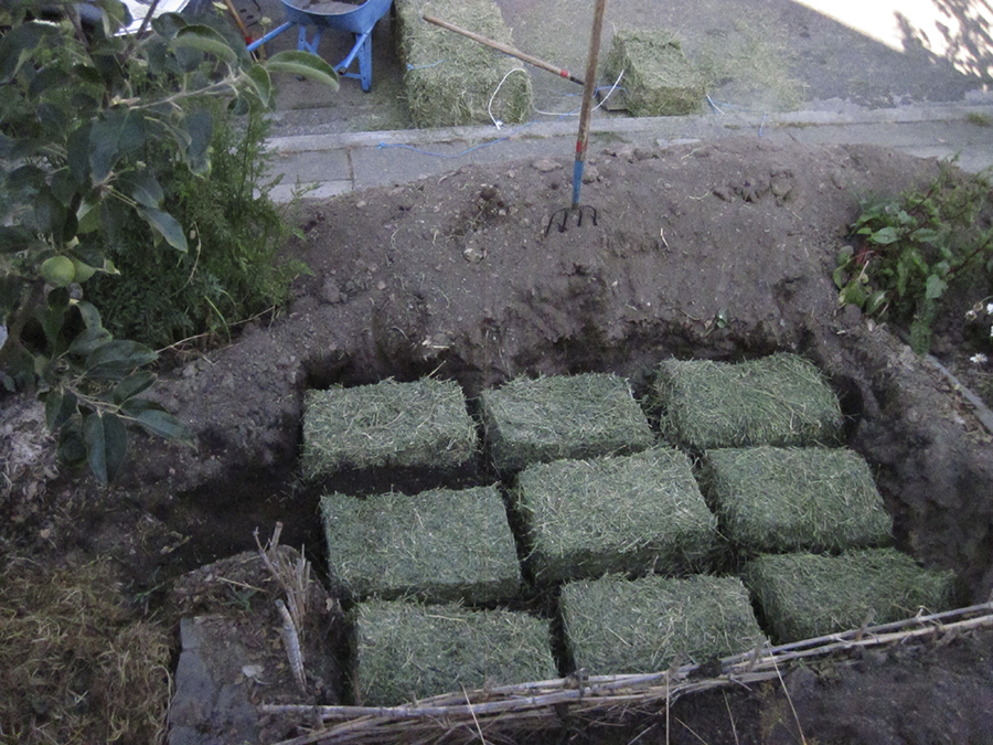 Alfalfa Straw Tiles in Veggie Bed.