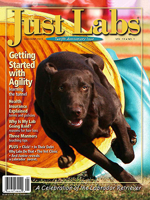 Agility Article Featuring Lisa & Dan Selthofer