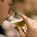 The Best Beer Festivals