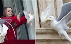 Feathers flew at the Vatican after two doves were released by two children from the Pope's balcony during his Sunday address at the Vatican and immediately attacked by a gull and a crow.