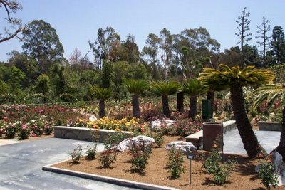 The Rose Hills Pageant of Roses Garden picture 3