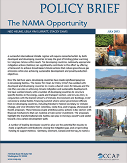 Policy-Brief-NAMA-Vision_July-2013