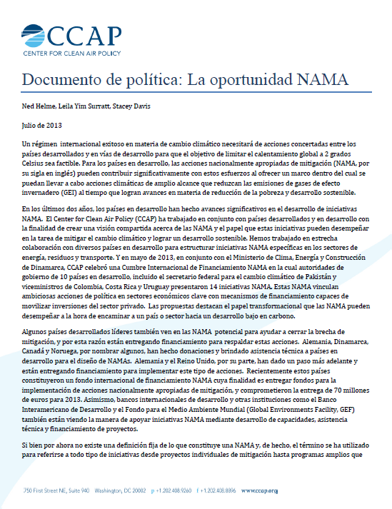 Documento-de-politica-la-oportunidad-NAMA_Julio-2013