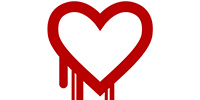 Report: NSA Exploited Heartbleed to Siphon Passwords for Two Years