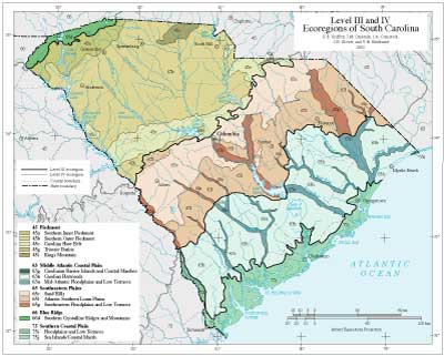 Level III and IV Ecoregions of South Carolina
