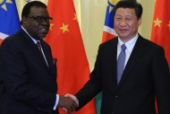 Chinese President Xi Jinping shakes hands with Namibian Prime Minister Hage Geingob on April 8 in Beijing