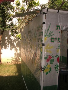 Basics of Sukkot