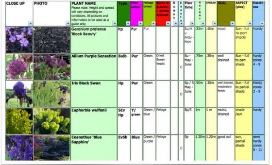 MAY-plants-selection