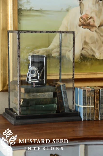 decorating with cameras Add a Little Vintage to your Decor!