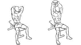 Dumbbell seated triceps press