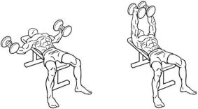 Dumbbell flys exercise