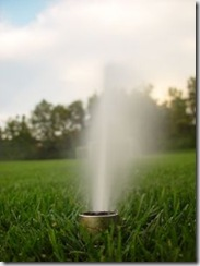 waterconservation Water Conservation Tips - Finding Ways To Green Up Your Home