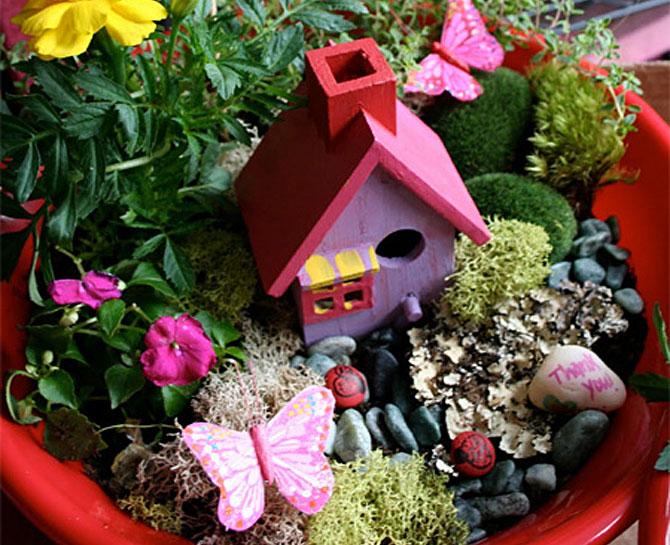 суккуленты и кактусы мини-садик 54