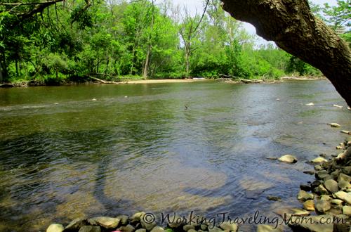 Huron River view Nichols Arboretum