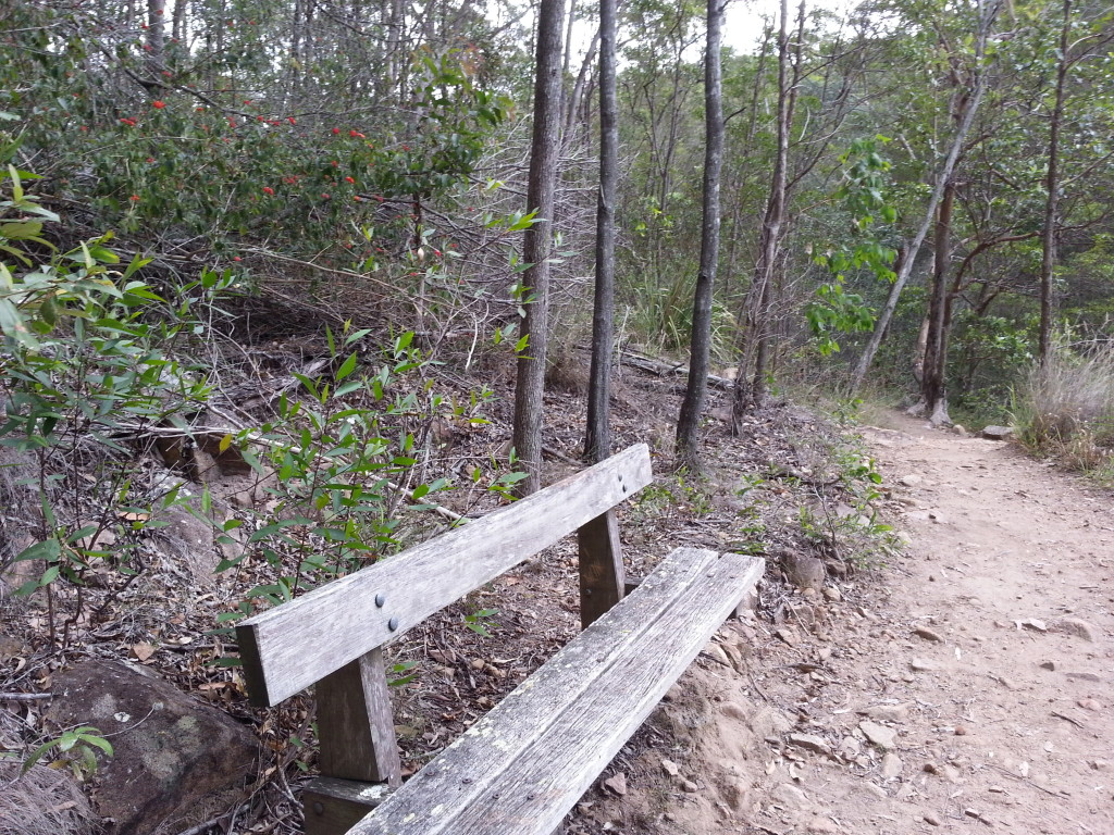 Mt Coot-tha, Brisbane, Simpson Falls, Australia, Queensland, Hiking, Bush walking, parks Brisbane, nature, queensland