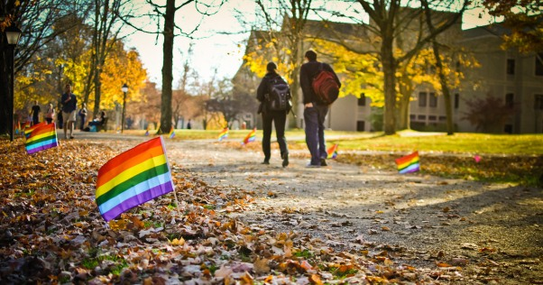 LGBT-Flags-on-University-Campus