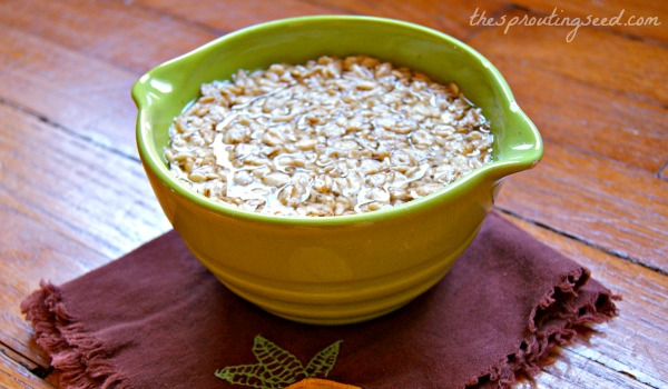 soaked oats: 9 ways thesproutingseed.com