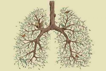 EVERYTHING YOU NEED TO KNOW ABOUT LUNG CANCER