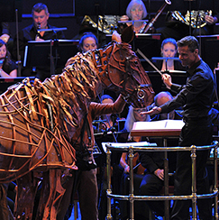 Joey gallops into the Royal Albert Hall for <em>War Horse</em> Prom