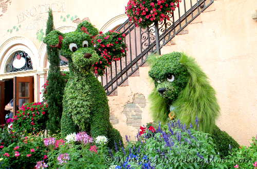 Lady and the Tramp at the Epcot Flower and Garden Festival.