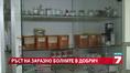 След потопа - бум на инфекции в Добрич