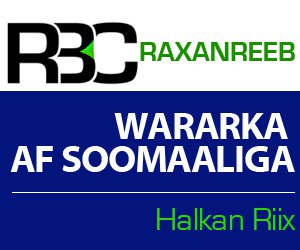 300 somali