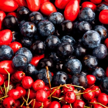berries-fruits