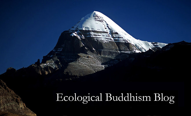 Ecological Buddhism Blog