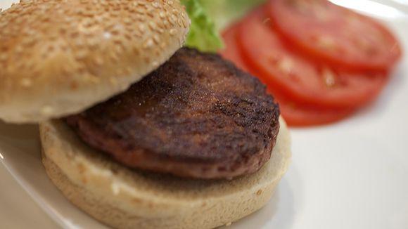 Burger Hamburger Fleisch Retortenfleisch Stammzeooen Zuchtfleisch Kunstfleisch Tissue Engineering