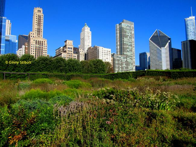 NPWG-Chicago13