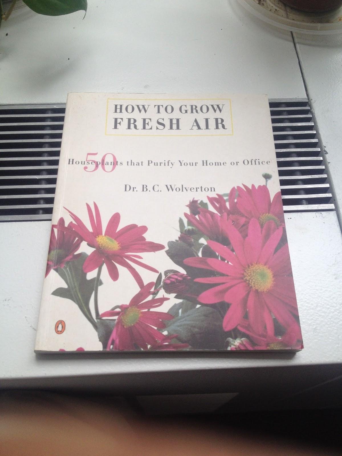 air filtering houseplants book