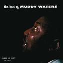 Cover of The Best Of Muddy Waters