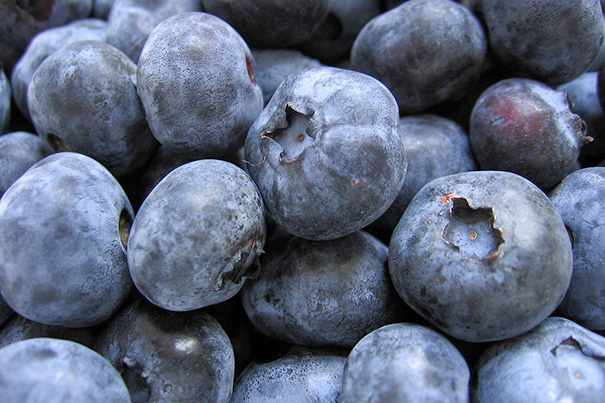 Blueberries_605
