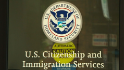 Immigration: Go online or hire a lawyer?