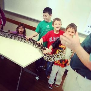 Getting chummy with a Burmese python