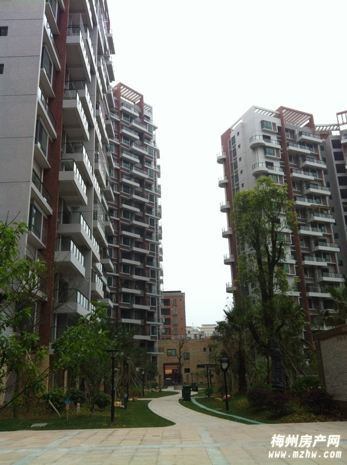 桃源小镇15楼3房仅售61万8千