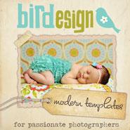 [Bird Design]