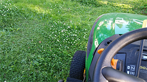 Leave A Clover Patch