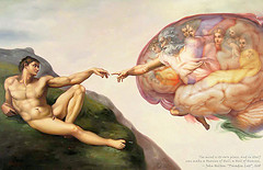 Brain of the Sistine Chapel