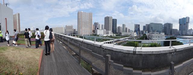 屋上緑化ビル