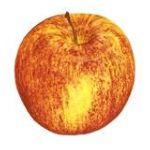 PMA - Apples 0033383027616  / UPC 033383027616