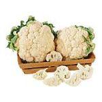 PMA - Organically Grown 1 head 0033383904054  / UPC 033383904054