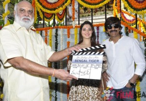 Bengal Tiger Movie Launch