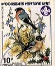 Sheffield Scout Stamp 1986 - Bullfinches