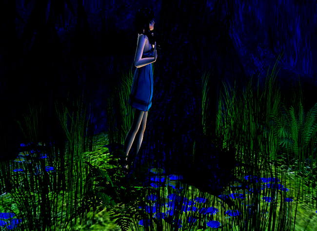 Sims2EP82011-07-0710-55-30-29.png