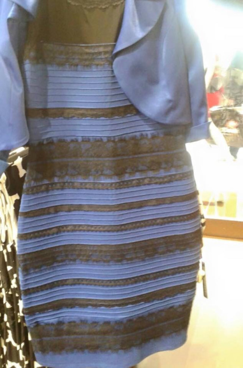 guys please help me - is this dress white and gold, or blue and black? Me and my friends can't agree and we are freaking the fuck out