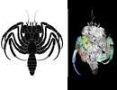 The oldest crab larva yet found Foto: Haug/LMU/Nature Communications