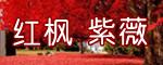 红枫 紫薇